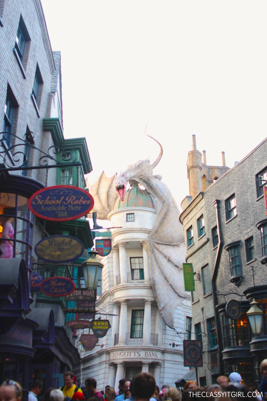 The reality of Diagon Alley...literally it felt like if we were in the movies!